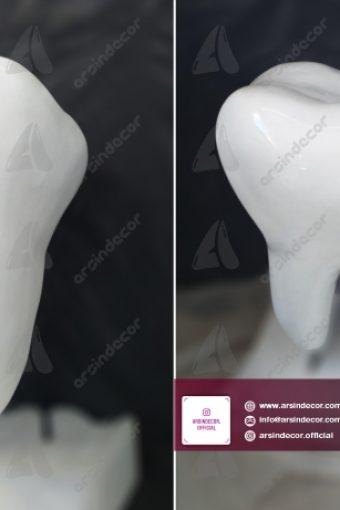 ماکت تبلیغاتی دندان